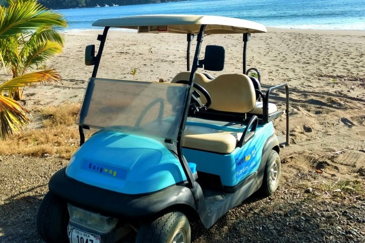 easyway golf carts 03
