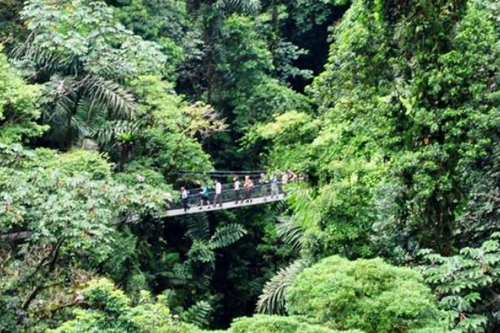 samara arenal 1 day hot springs rappelling hanging bridges tour costa rica info center 11