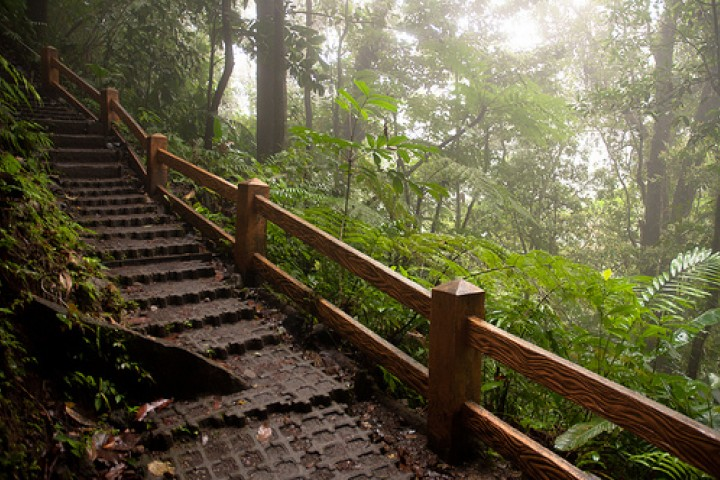 samara arenal 1 day hot springs rappelling hanging bridges tour costa rica info center 14
